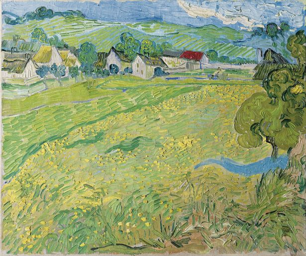 716px-vincent_van_gogh_-_les_vessenots_a_auvers_-_google_art_project
